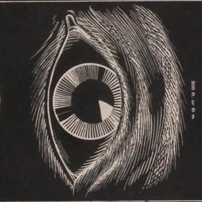 Digital Preservation of the NLM Digital Collections